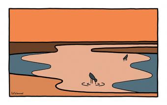Mud flats 1