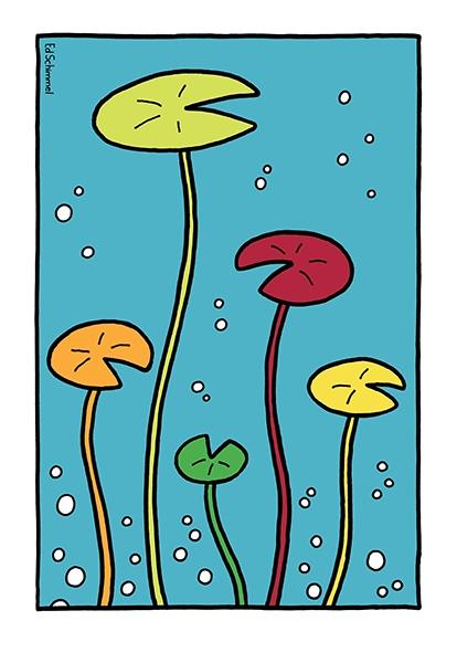 Ed Schimmel - Pop Artist in Australia - Water lilies