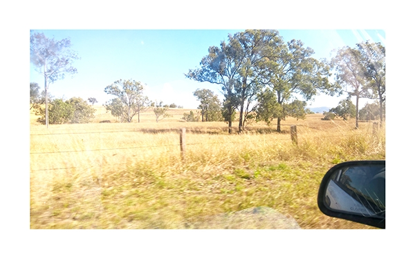 Ed Schimmel - Pop Artist in Australia - Drive to Kilcoy – 28th of July 2018 11:30:33 AM